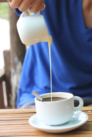 Mondulkiri Coffee